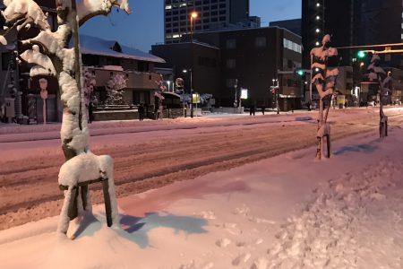 雪だーーー