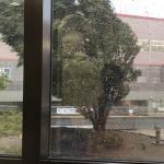 台風直撃⁈