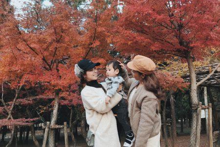 奈良公園🦌🍁