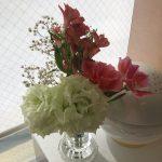 清水歯科のお花💐