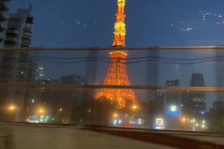 さらっと東京タワー🗼