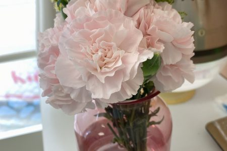 清水歯科のお花シリーズ